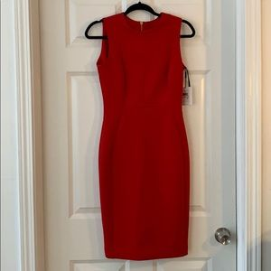Classic, NWT Calvin Klein Dress